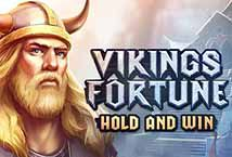Бесплатная игра Vikings Fortune Hold and Win | Вулкан Казино играть онлайн